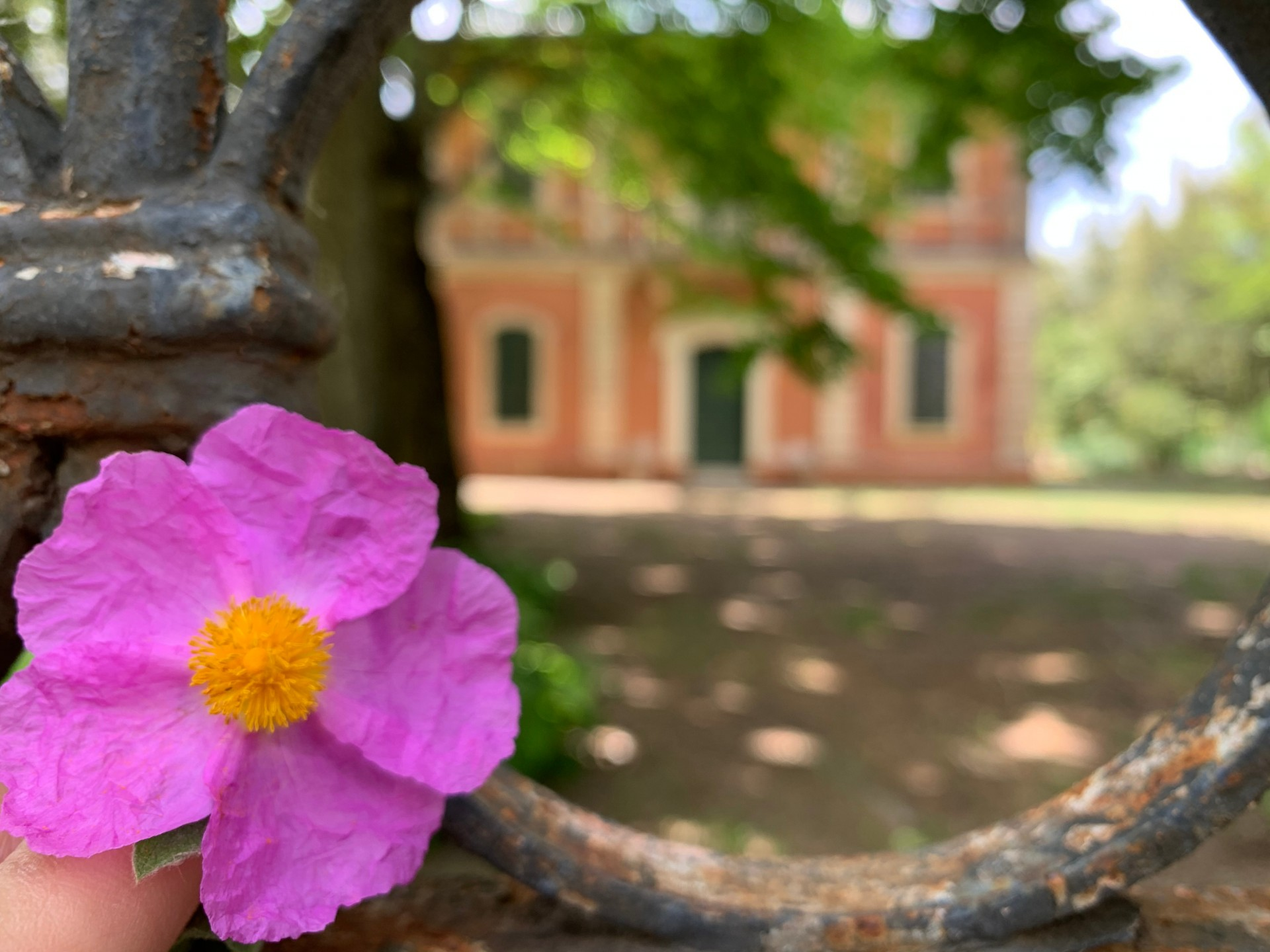 Villa Morandi